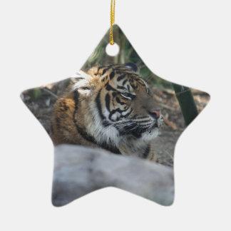 Tigre Ornement Étoile En Céramique