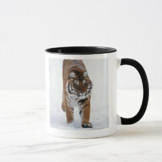 Tigre sibérien dans la neige tasse