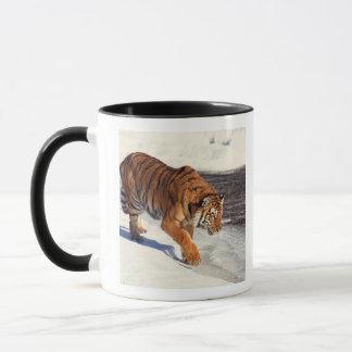 Tigre sibérien tasse