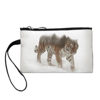 Tigre-Tigre-double exposition-faune sibérienne Bourse