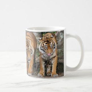 Tigres au zoo d'Auckland Tasse À Café