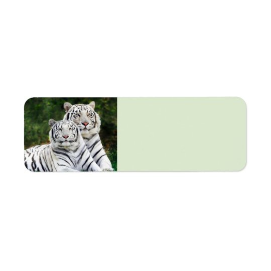 Tigres blancs étiquette d'adresse retour
