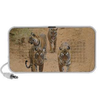 Tigres de Bengale royaux sur la voie, Ranthambhor  Mini Haut-parleur