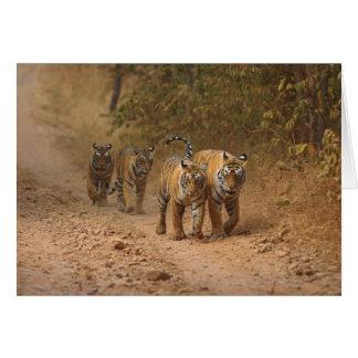 Tigres de Bengale royaux sur le mouvement, Carte De Vœux