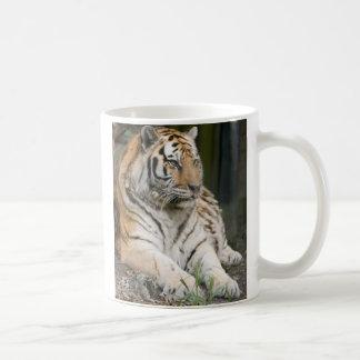 Tigresse de tigre sibérien mug