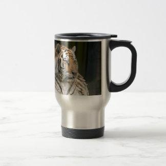 Tigresse de tigre sibérien mug de voyage