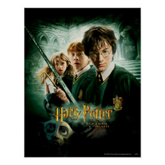 Tir de groupe de ratière de Harry Potter Ron Hermi Posters