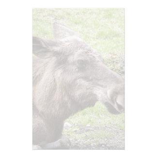 Tir de profil de vache à orignaux papier à lettre