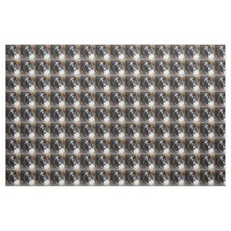 Tissu chien de berger de Shetland noir et blanc