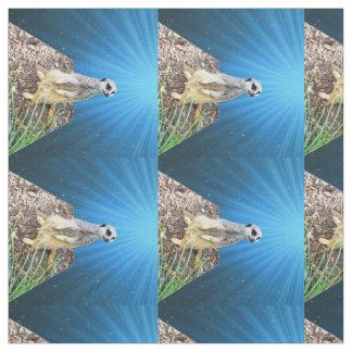 Tissu Nuit bleue de Meerkat, matériel peigné de coton