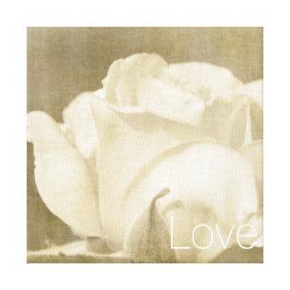 Toile Amour de rose blanc