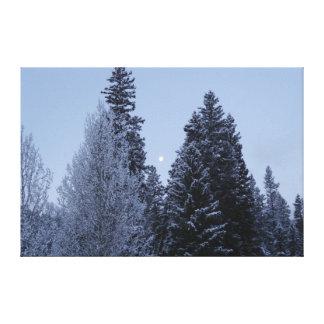 Toile Arbres d'hiver à la photographie de paysage de