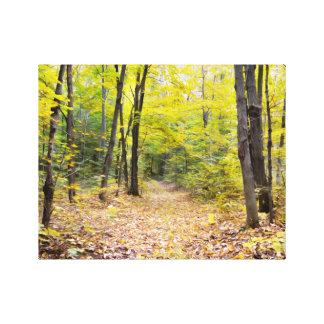 Toile Automne dans la forêt