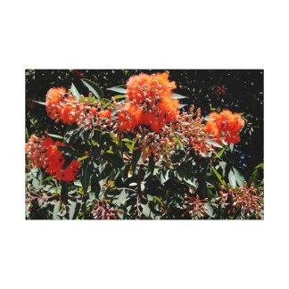 Toile Banksia orange et art Nuts de couleur d'eau de