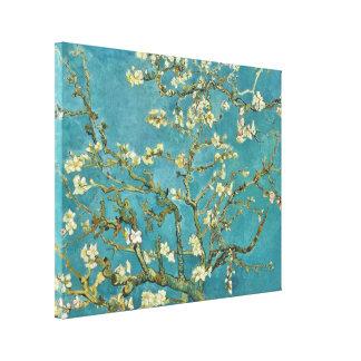 Toile Beaux-arts GalleryHD de fleur d'amande de Vincent