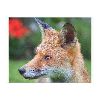Toile Belle photographie en gros plan de renard dans le