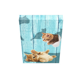 Toile Chat