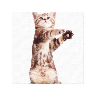 Toile Chat debout - minou - animal familier - félin -