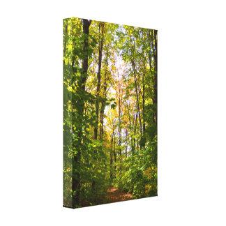 Toile Chemin vibrant dans la forêt