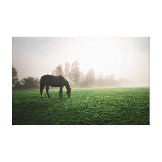 Toile Cheval dans la brume de matin