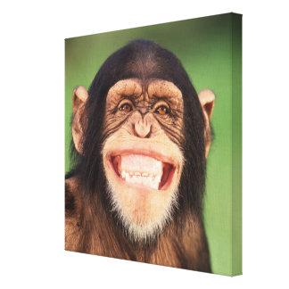 Toile Chimpanzé de grimacerie des images | de Getty