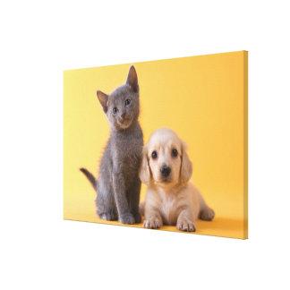 Toile Chiot bleu russe de chaton et de teckel