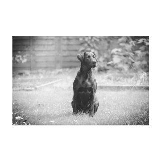 Toile Chiot noir de labrador retriever