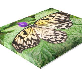 Toile Copie jaune et noire d'art de papillon