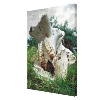 Toile Crâne d'éléphant