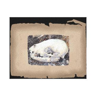 Toile Crâne unique de raton laveur de sépia