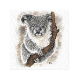 Toile de koala de bébé