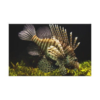 Toile de Lionfish