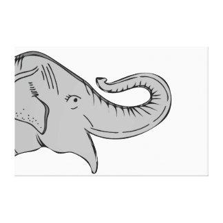 Toile d'éléphant
