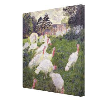 Toile Dindes de Claude Monet | chez Chateau de