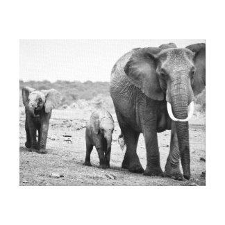 Toile Éléphant africain et veaux | Kenya, Afrique