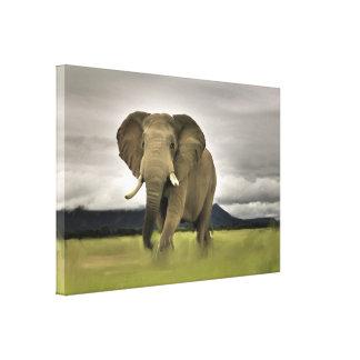 Toile Éléphant original dans la longue herbe