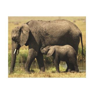 Toile Éléphants africains