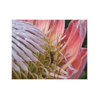 Toile enveloppée avec la fleur et l'abeille impressions sur toile