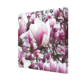 Toile - enveloppée - magnolia de soucoupe l