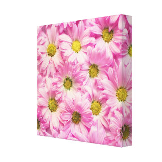 Toile - enveloppée - marguerites roses de Gerbera