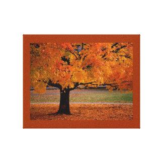 Toile enveloppée par beauté d automne toile tendue