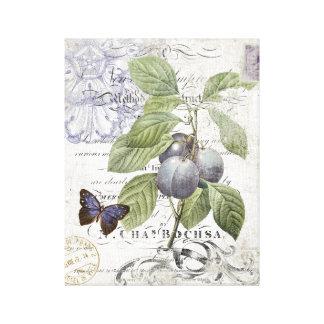Toile étirée par prune botanique française vintage toiles