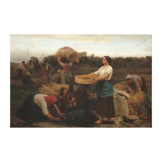 Toile Femmes rurales moissonnant la graine de colza par