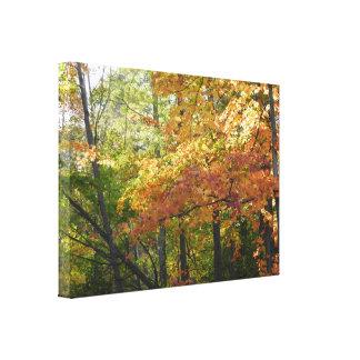 Toile Feuille de couleur/automne de chute