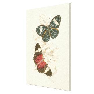 Toile Feuille de sépia avec les papillons colorés