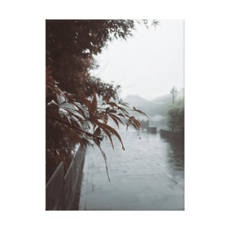 Toile Feuille d'érable sous la pluie brumeuse