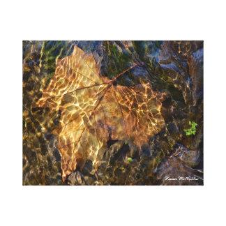 Toile Feuille sous l'art photographique de l'eau