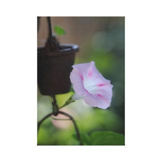 Toile Fleur allumée par dos