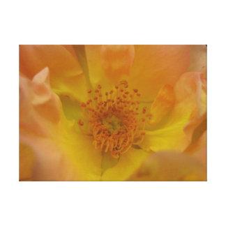 Toile Fleur de mur 3