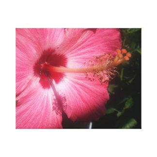 Toile Fleur de mur 7
